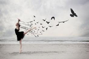 Livre, expressar